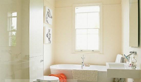 Как почистить туалет