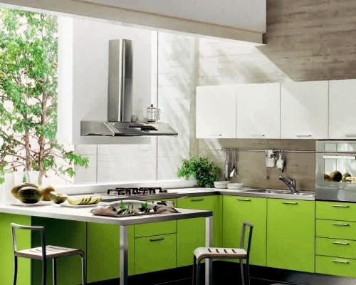 modern-green-Kitchen-cabinets-design-ideas-and-pictures-Design--500x500