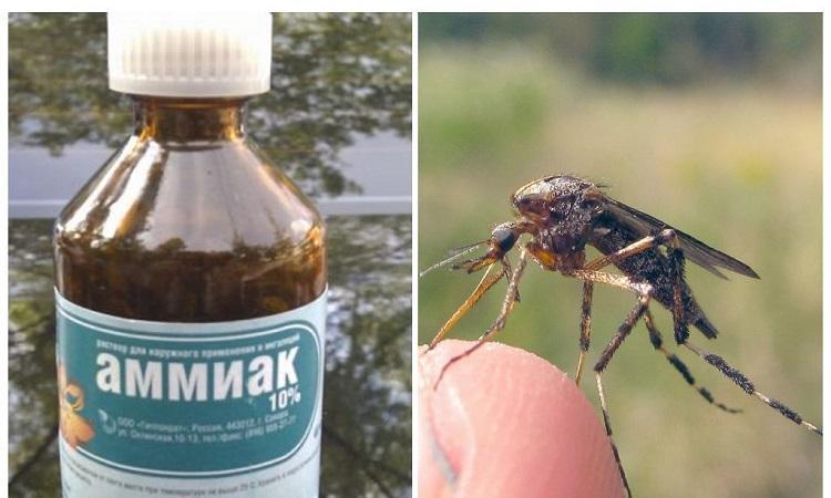 nashatyrnyj-spirt-ot-komarov