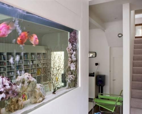 wall-divider-aquarium-2
