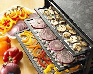 Сушилка для овощей и фруктов своими руками