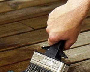 Как убрать плесень с деревянных поверхностей?
