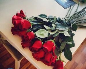Что добавить в воду, чтобы розы дольше стояли?