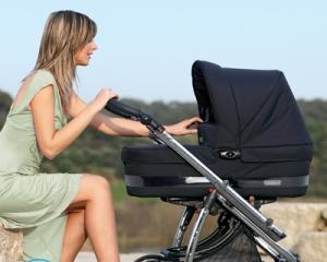 Чем отстирать плесень на коляске?