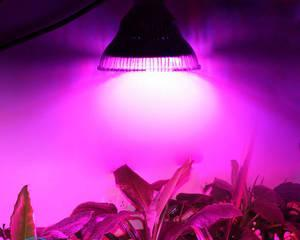 Лампа для растений своими руками