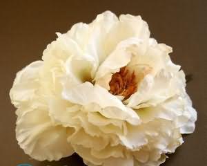 Розы из гофрированной бумаги своими руками пошагово